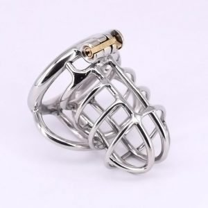 Male Cock Cage Stainless Steel Chastity Device with Stealth Lock Metal Ball Cage